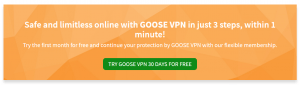 Try GOOSE VPN 30 Days for free