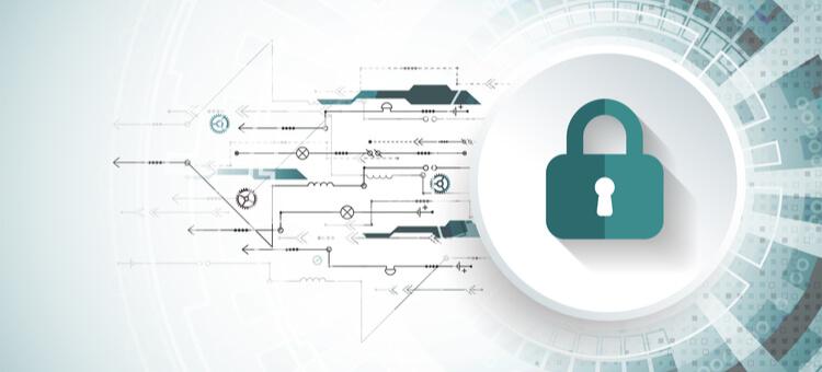 GOOSE VPN Encrypt