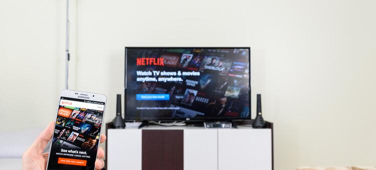 GOOSE VPN Netflix kijken