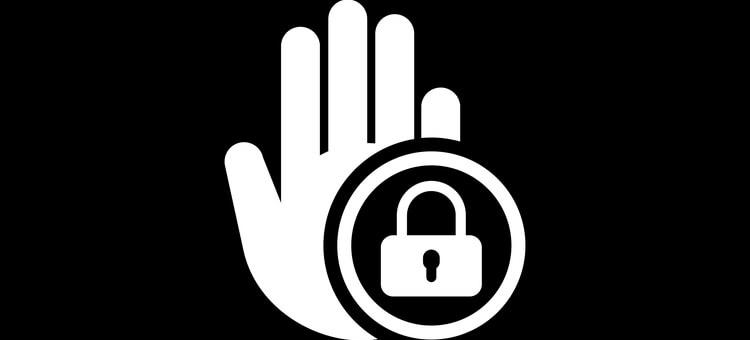 GOOSE VPN geo-restriction