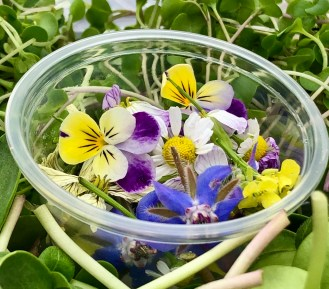 Micro Flowers, Assorted