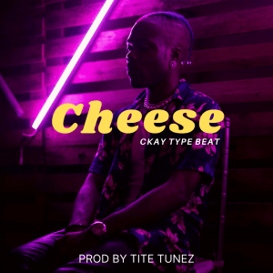 Freebeat:- Cheese – Ckay Type Beat (Prod By Tite Tunez)