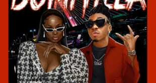 Lisa Yaro ft. Mayorkun - 'Domitila'