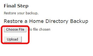 Select The Upload File
