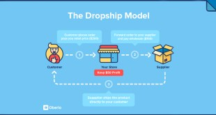 Make money online with drop shipping support