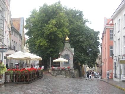 Rainy Tallinn