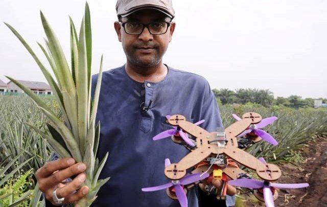 انناس کے پتوں سے ماحول دوست ڈرون کی تیاری