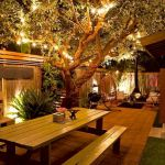 Backyards Garden Lighting Design Ideas (53)