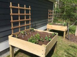 Garden Beds Design Ideas For Summer (10)