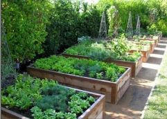 Garden Beds Design Ideas For Summer (31)