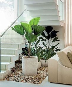 Indoor Garden Office and Office Plants Design Ideas For Summer (71)