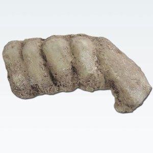 bigfoot knuckles cast