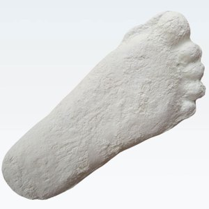 Patterson Gimlin Bigfoot Cast