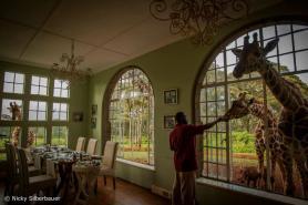 Table for three at Giraffe Manor, Nairobi, Kenya - Nicky Silberbauer Photography