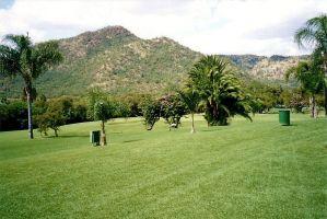 d7 Lawns