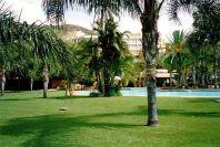 d8 Pool lawns