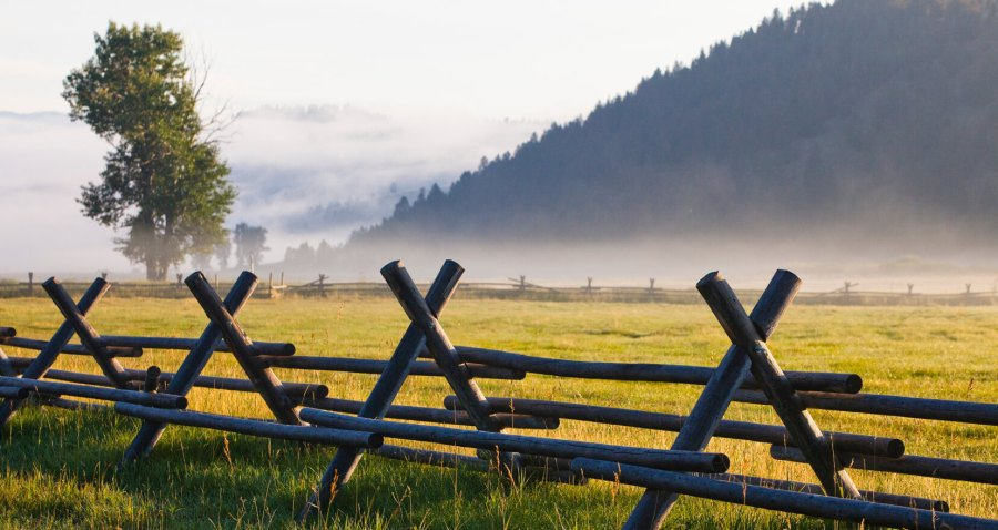 prarie with fence