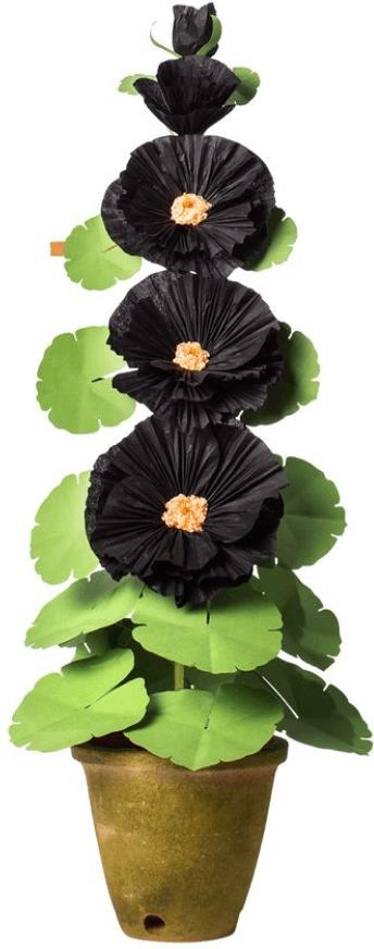 The Green Vase Hollyhock Plant in Black