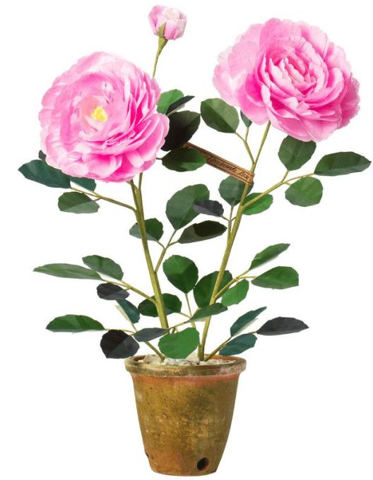The Green Vase Floribunda Rose, goop, $565