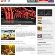 Setup Responsive Blogger Templates