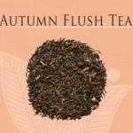 Autumn Flush Gopaldhara Tea