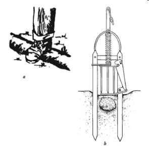 victor-harpoon trapping moles