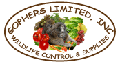 Gophers Limited, Inc
