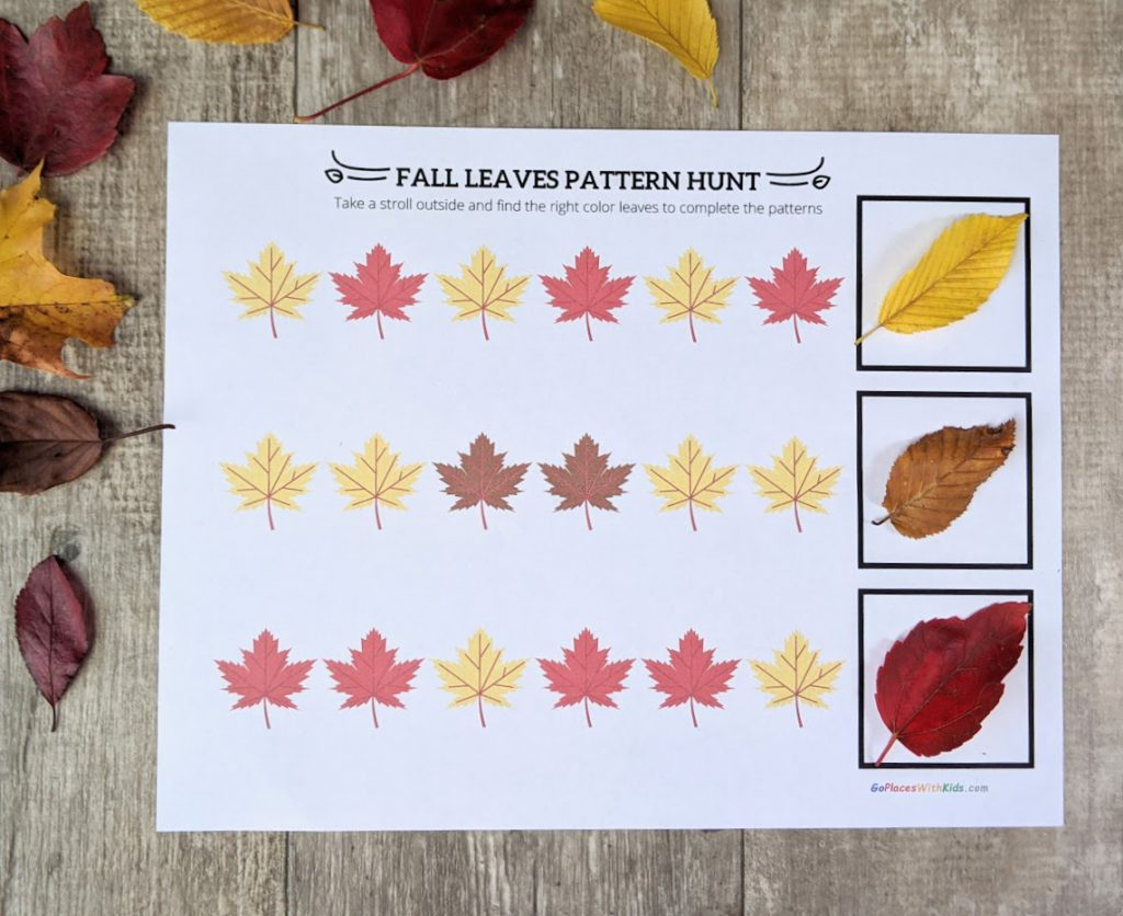 Fall Leaf Patterns With Printable