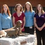 N.C. State's Behavioral Medicine Service resolves problems, restores owner-pet relationship