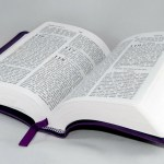 Second N.C. magistrate resigns: 'I know what the Bible says'