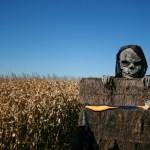 Spooky scenes for Halloween