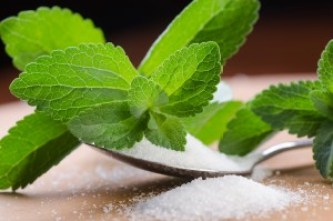 Stevia is better than other sugar-free sweeterners, but is still not a fully healthy choice for wellness. Photo Credit: Daniele Depascale via Dollar Photo Club.