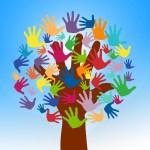 Triangle: Service org seeks volunteers
