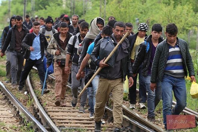 migranti-8-7907