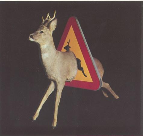 Varning för hjort - Charlottenborg Köpenhamn, 1981