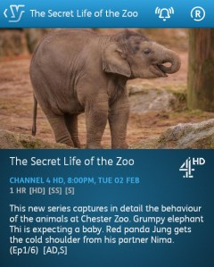 The Secret Life of the Zoo - 02-02-2016 - YouView app