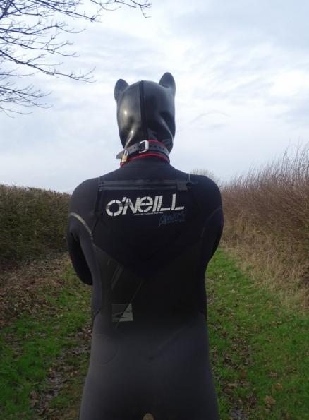 Wetsuit + pup hood
