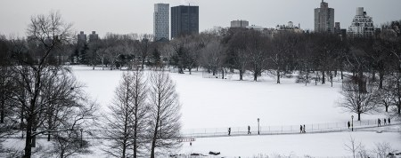 A few people ventured out to The Great Lawn in Central Park after a snowstorm hit the New York City area, Friday Jan. 9, 2015. (Gordon Donovan/Yahoo News)