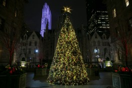 Probably the loveliest Christmas tree in New York City, the tree in the courtyard of the New York Palace. Rockefeller Center beams in the background. (Gordon Donovan/Yahoo News)