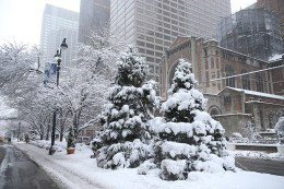Snow covers trees on Park Avenue on Feb. 9, 2017, in New York. (Gordon Donovan/Yahoo News)