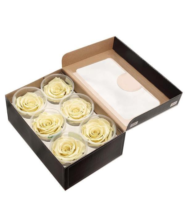 where to buy forever roses,