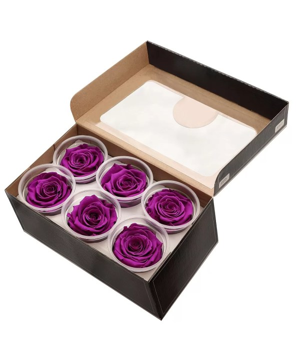 Ecuador roses order online, rose amore buy USA,