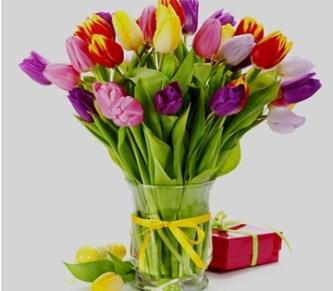 gorgeous flowers jamaica