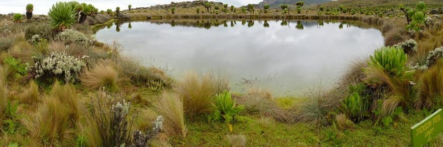jackson-pool-peak-elgon
