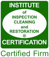 Mold Cleanup Company in Canton, GA