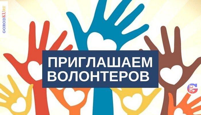 Набор волонтеров для поддержки голосования за лучшие дизайн-проекты благоустройства