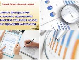 Сплошное статистическое наблюдение малого и среднего бизнеса за 2020 год