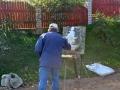 Живописец на Светлице