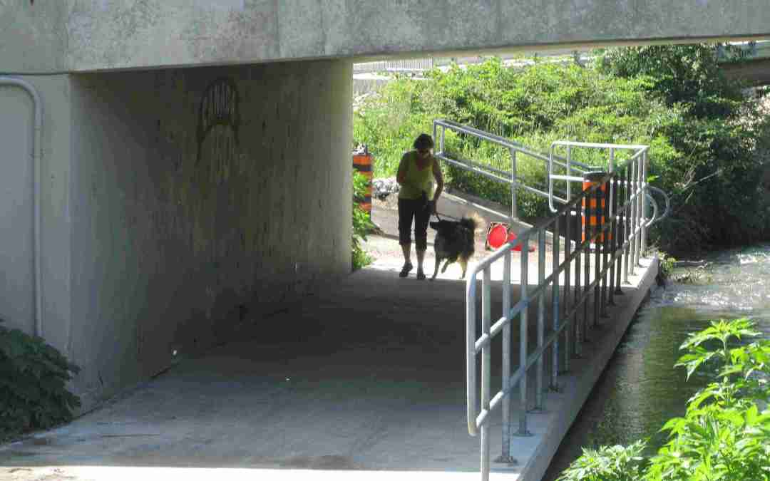 Bicyclist And Pedestrian Safety In Jeopardy Along Latest Path In London Ontario