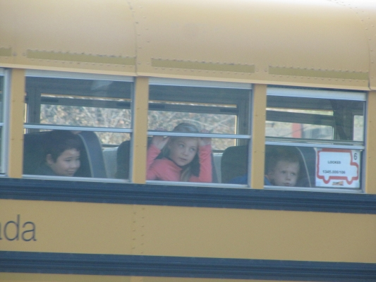 School Buses & Seat-Belts – Continued Confusion and Misunderstanding